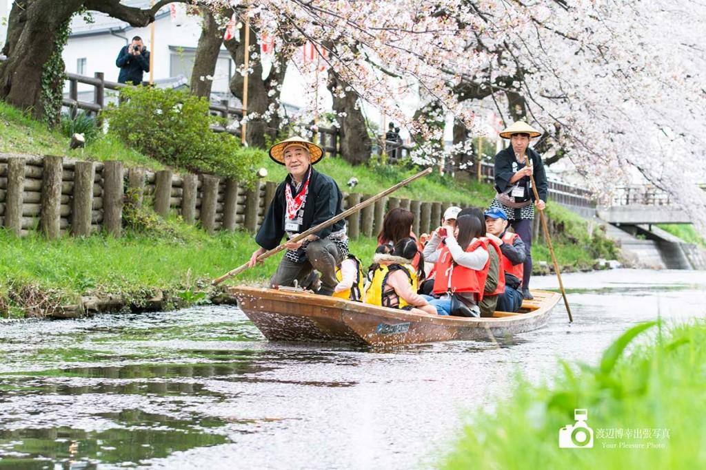 川越桜まつりで新河岸川を往来する和船