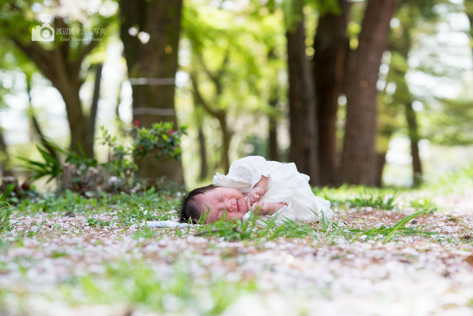 お宮参りの出張撮影|大宮氷川神社|春のうたたねですね|埼玉県|さいたま市
