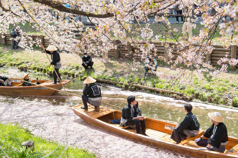 駆け足で。|川越氷川神社