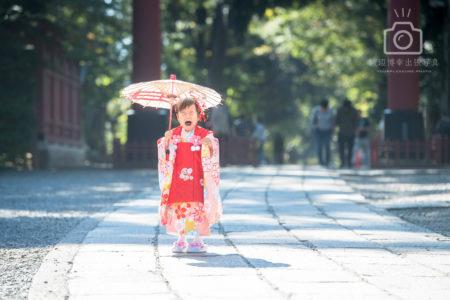 大宮氷川神社の七五三写真