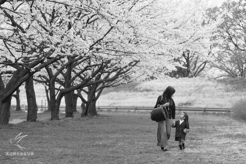 桜並木の下で歩く女性と女の子