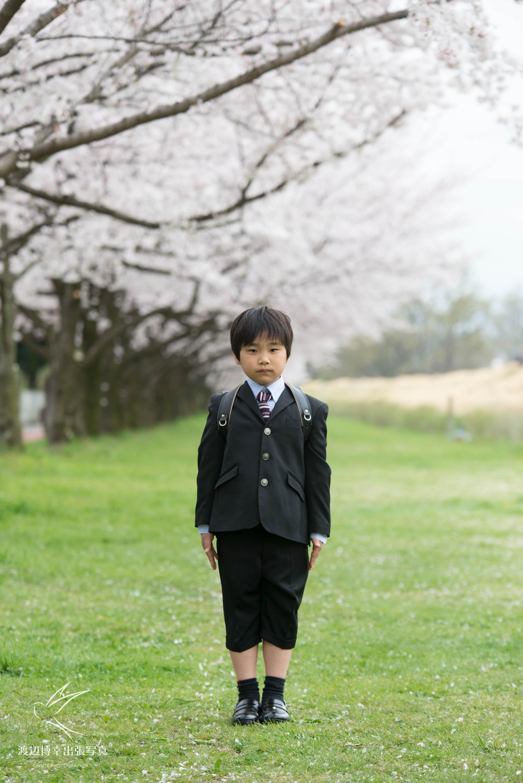 桜の木の下で気をつけをするランドセルを背負った小学1年生