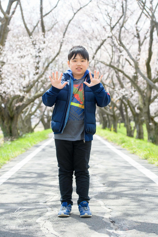 桜の木の下に立つ少年