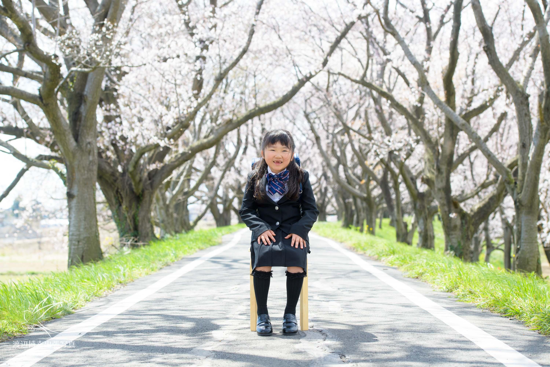 桜並木の下で椅子に座る小学1年生の女の子