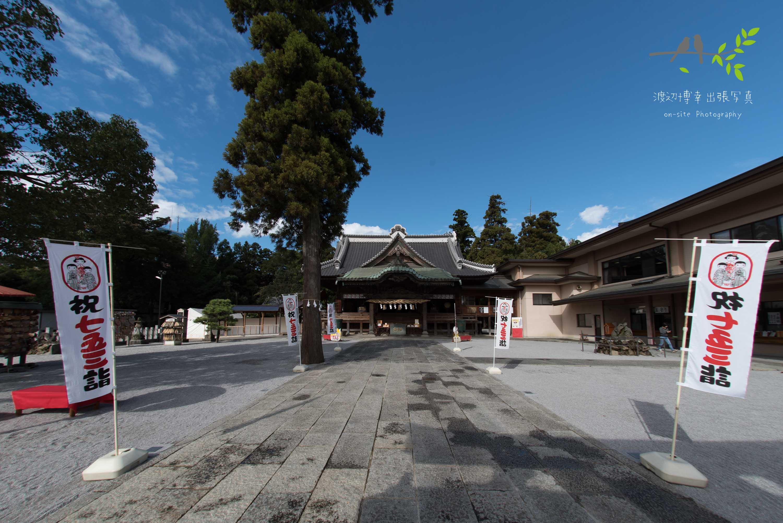 青空の下の神社の参道