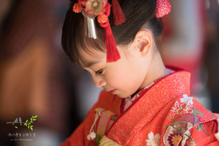 七五三出張撮影|武蔵一宮 氷川神社(大宮氷川神社)|埼玉県|さいたま市|楽しい七五三|PHOTO-LOG - Vol.3