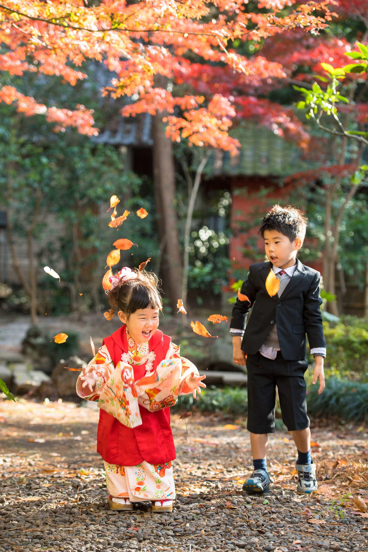 葉っぱを頭の上に投げて遊ぶ七五三の着物姿の女の子とお兄ちゃん