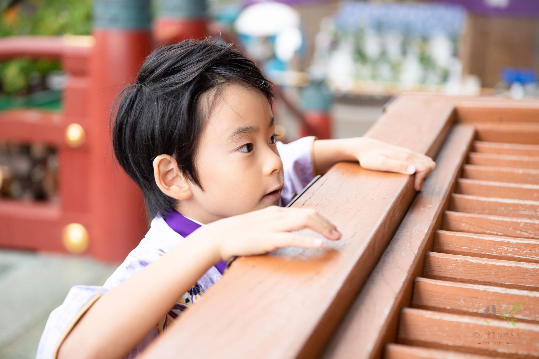 お賽銭箱に手をかける七五三の紫色の着物姿の男の子