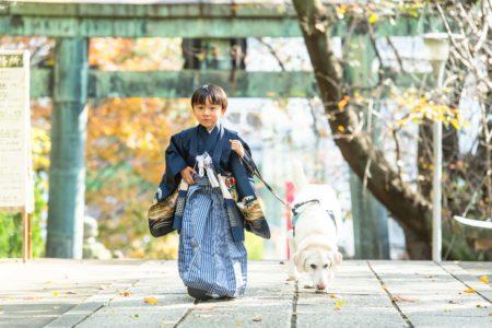 お客さまより|東京都|千代田区|亀岡八幡宮|Mさまからのvoice