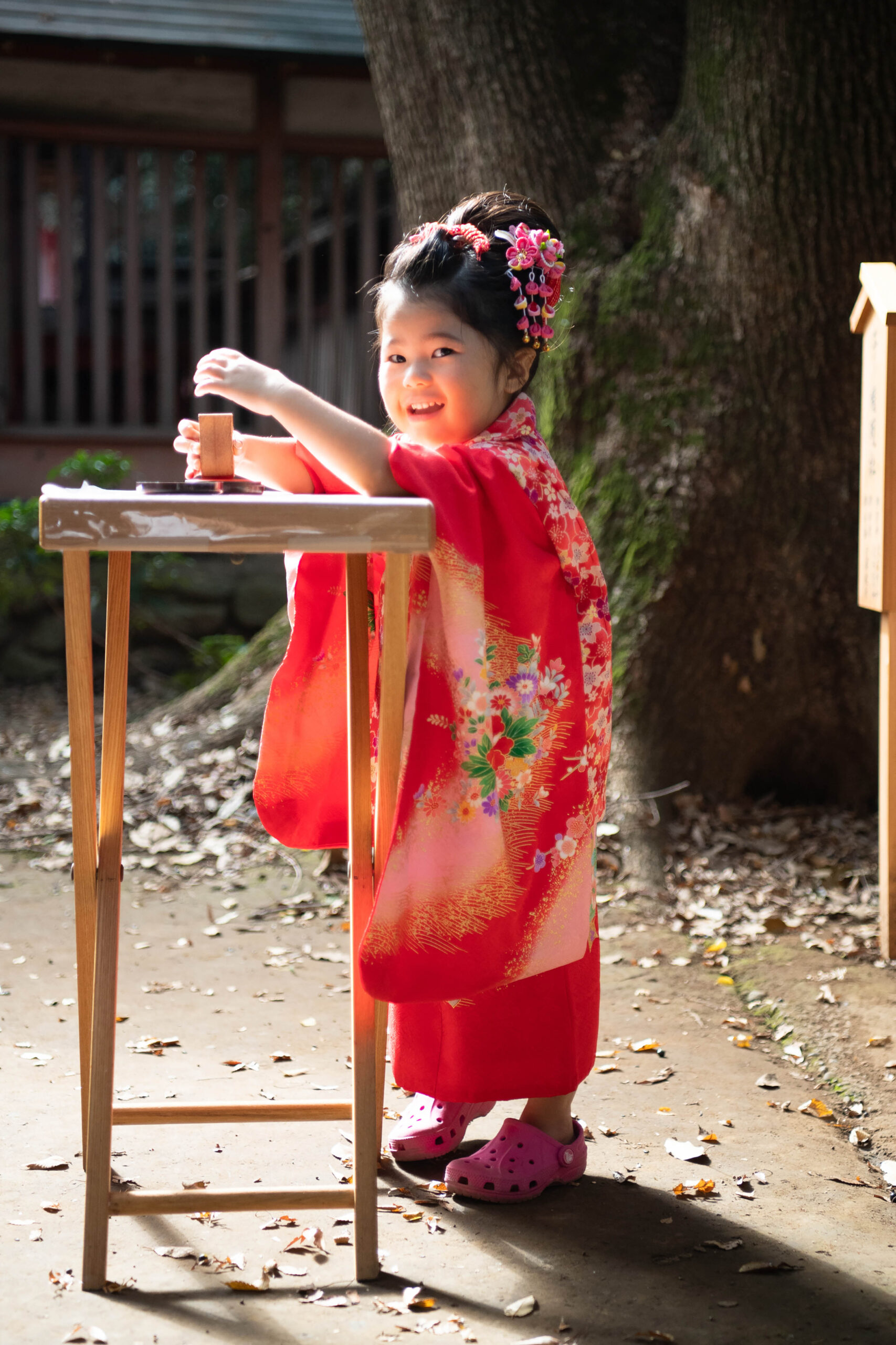 川越氷川神社で七五三の出張撮影|三歳の女の子とお兄ちゃん