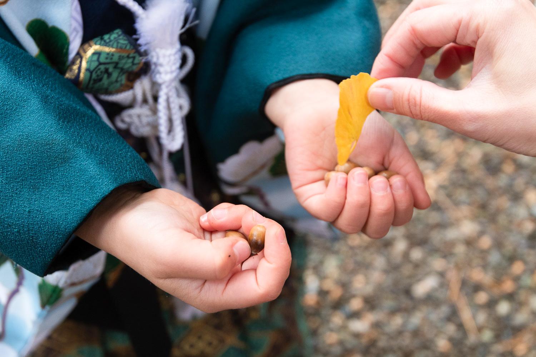 七五三出張撮影 世田谷八幡宮神社