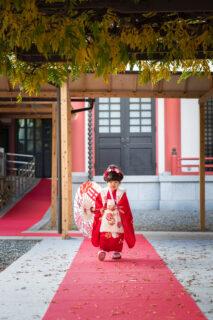 赤坂日枝神社|七五三の出張撮影|存在感ある3歳女の子|